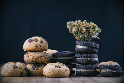 Cannabis and its extracted active ingredients are commonly mixed in to various types of food, including brownies, cookies, and candy.